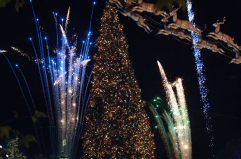 November 23, 2008 - Annual Tree Lighting Ceremony at The Grove